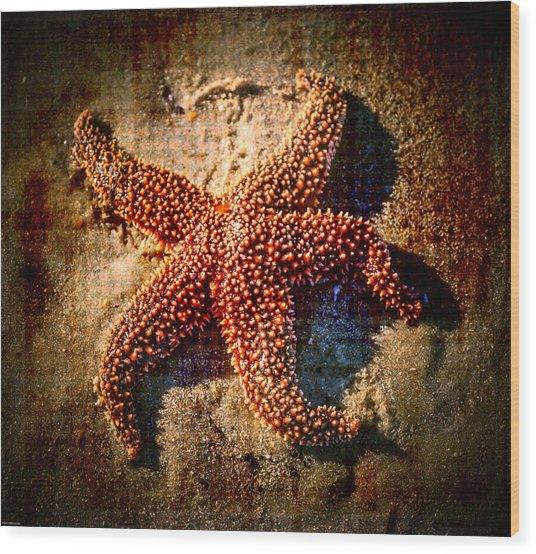 Starfish 2 Wood Print