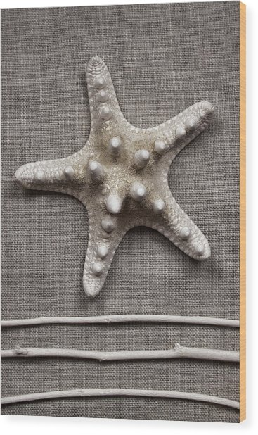 Starfish And Sticks Wood Print