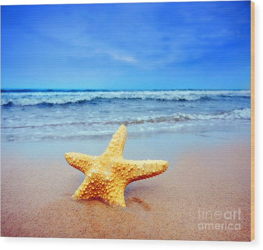 Starfish On A Beach   Wood Print