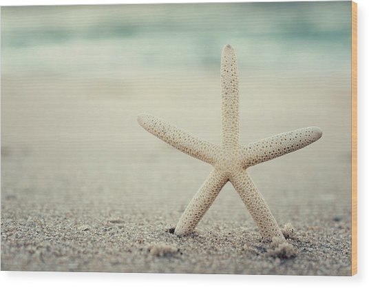 Starfish On Beach Vintage Seaside New Jersey  Wood Print