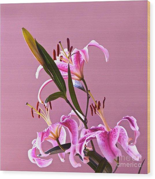 Stargazer Lilies Square Frame Wood Print