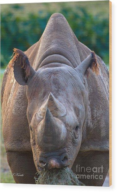 Staring Down Rhino Wood Print