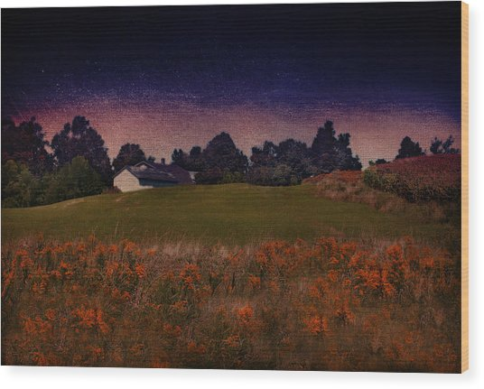 Starry Indigo Blue Twilight In The Country  Wood Print