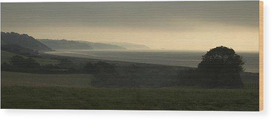 Start Bay Devon At Dawn Wood Print