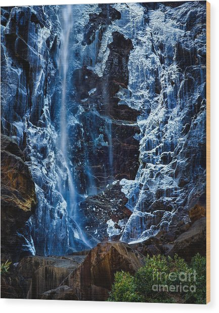 Start Of Spring Bridalvail Fall Wood Print