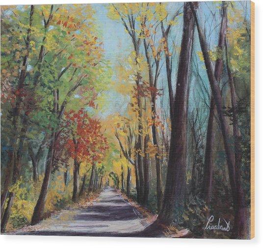 Starved Rock Park - Autumn Colors Wood Print by Prashant Shah