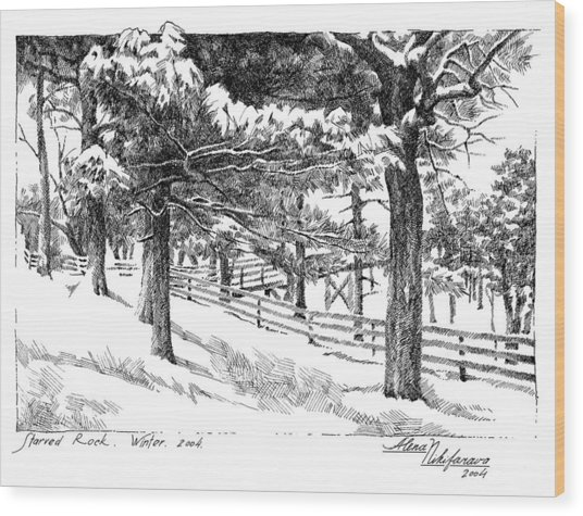 Starved Rock Winter 2004. Stippling. Wood Print