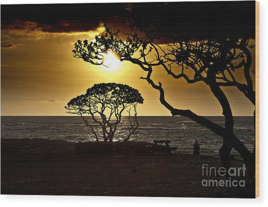State Park Sunset Wood Print by Karl Voss