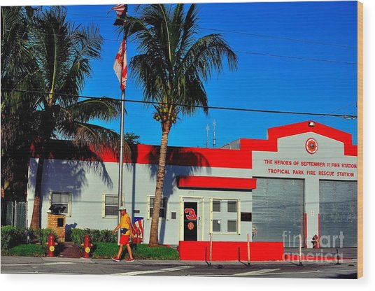 Station 3 Wood Print by Andres LaBrada