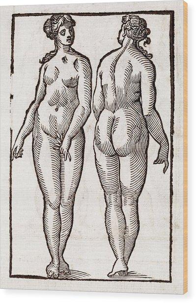 Statue By Praxiteles Wood Print