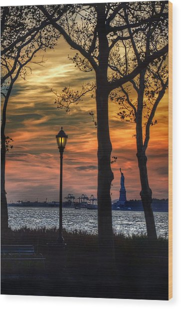 Statue Of Liberty From Battery Park Wood Print