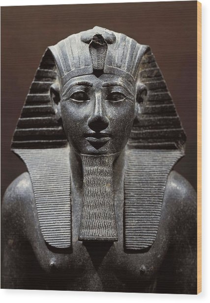 Statue Of Tuthmosis IIi. 1490 -1439 Bc Wood Print by Everett