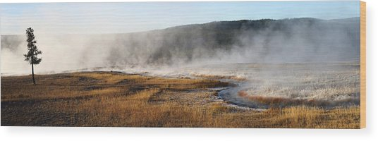 Steam Creek Wood Print