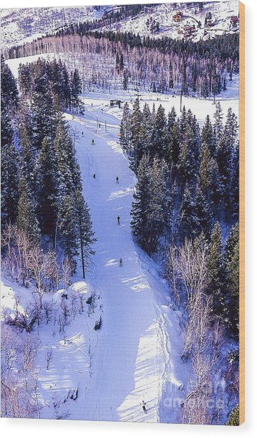 Steamboat Springs Colorado Ski Trail. Wood Print