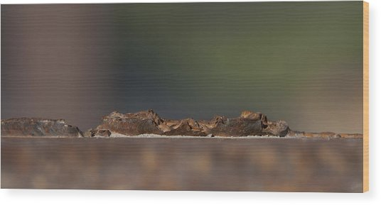 Steel Landscape Wood Print