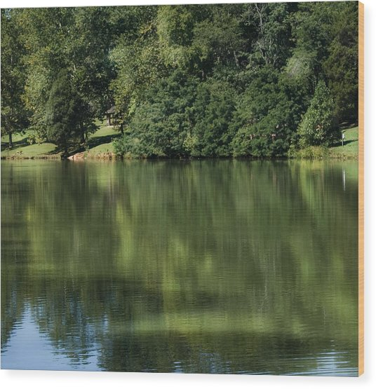 Steele Creek Park Reflections Wood Print