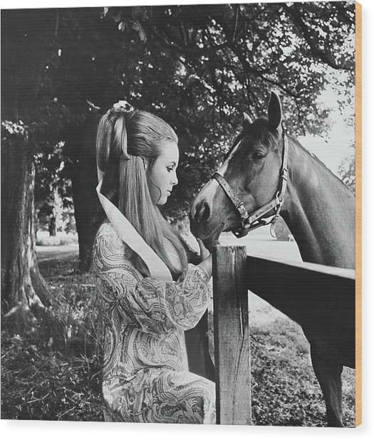 Stella Astor With A Horse Wood Print