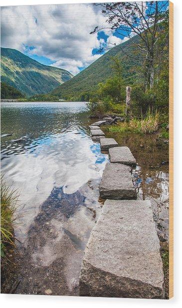 Stepping Stones Wood Print