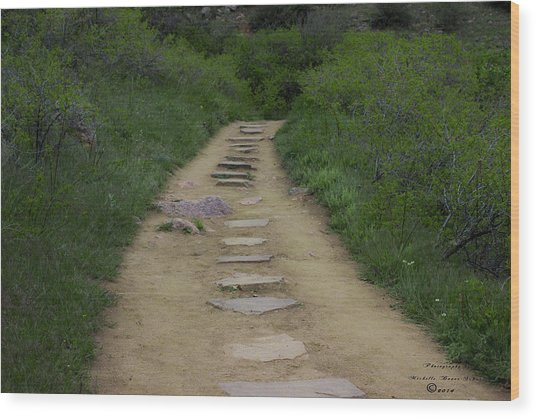 Steps Through Nature Wood Print by Missy Boone