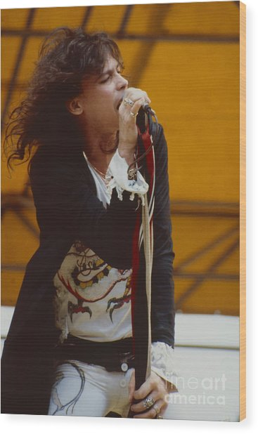Steven Tyler Of Aerosmith At Monsters Of Rock In Oakland Ca Wood Print