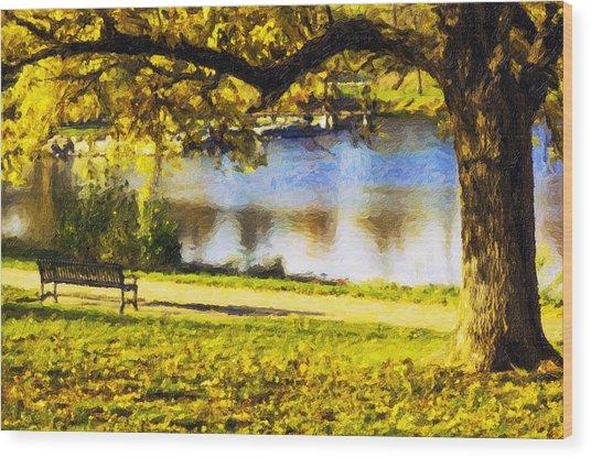 Stevens Lake Park Series 03 Wood Print by David Allen Pierson