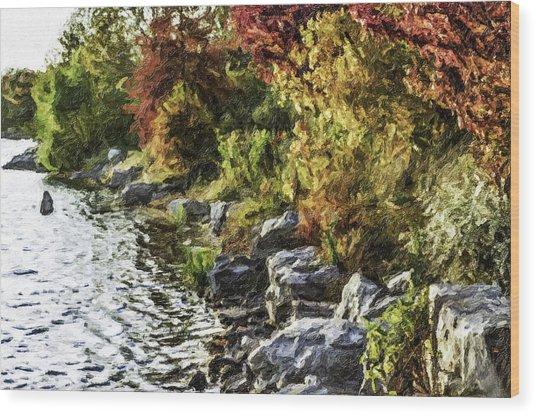 Stevens Lake Park Series 07 Wood Print by David Allen Pierson