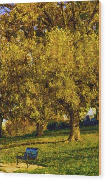 Stevens Lake Parkseries 02 Wood Print by David Allen Pierson