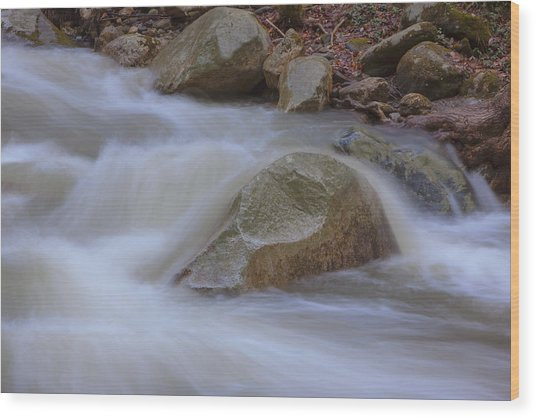 Stickney Brook Rock Wood Print