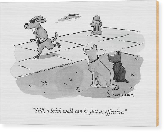 Still, A Brisk Walk Can Be Just As Effective Wood Print
