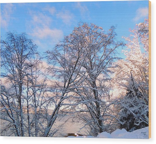 Still Of Winter Wood Print