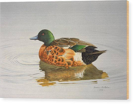 Still Waters - Chestnut Teal Wood Print