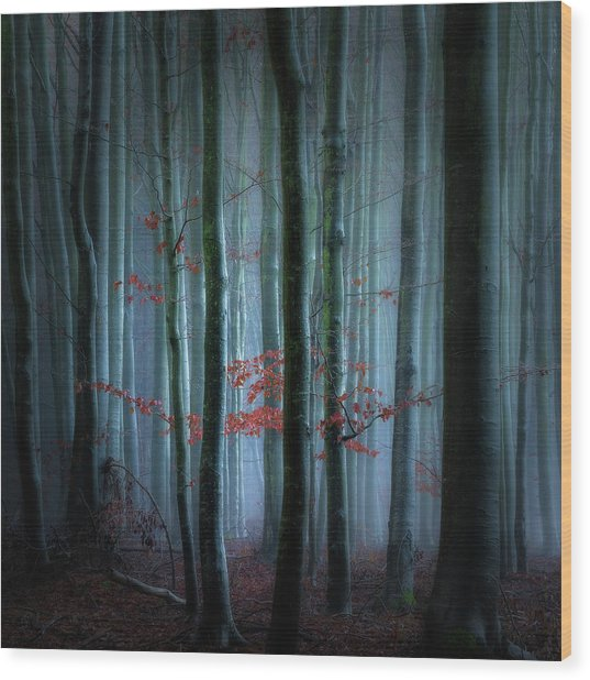 Stillness And Silence Wood Print