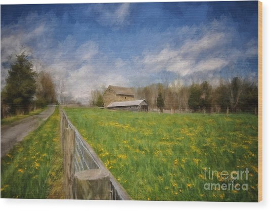 Wood Print featuring the photograph Stone Barn On A Spring Morning by Lois Bryan