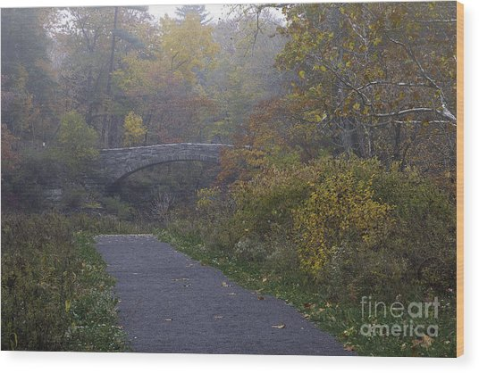 Stone Bridge In Autumn 3 Wood Print