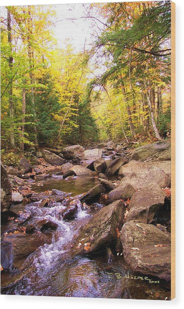 Stone Brook I Wood Print