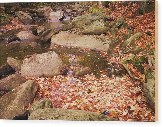 Stone Brook II Wood Print