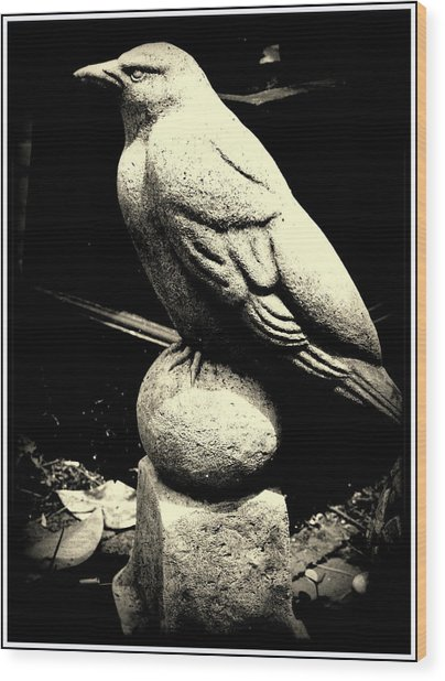 Stone Crow On Stone Ball Wood Print