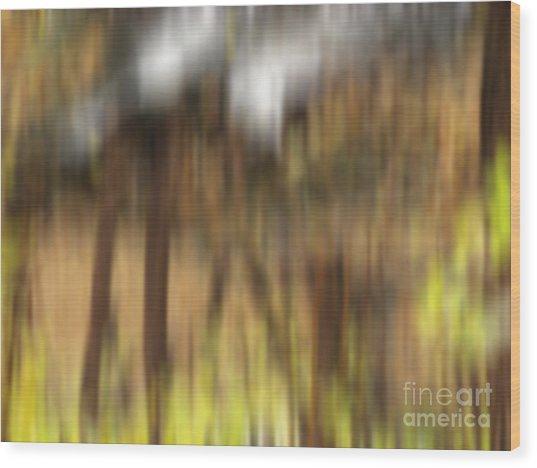 Stone Footbridge Wood Print