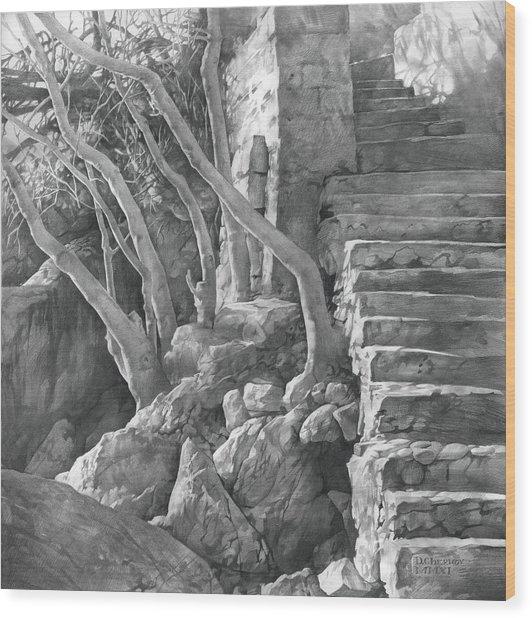 Stone Staircase 2011 Wood Print