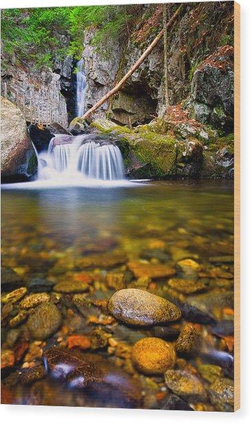 Stones In The Stream Wood Print