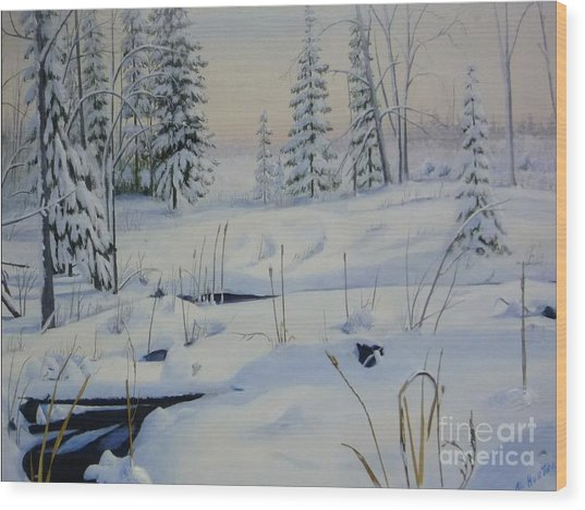 Stoney Swamp Wood Print