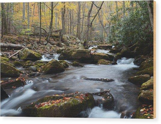 Stony Creek Wood Print