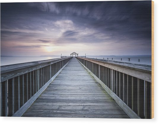 Stopping For The Big Stopper Wood Print