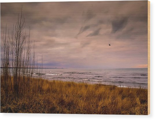 Storm Approaching At Dusk Wood Print