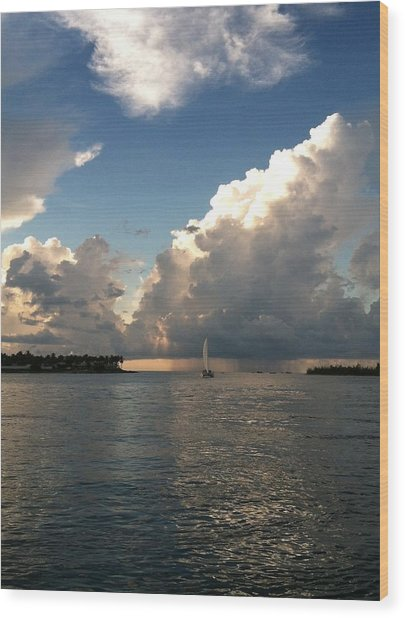 Storm Approaching Wood Print by Sharin Gabl