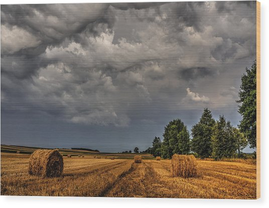 Storm Clouds Over Harvested Field In Poland 2 Wood Print