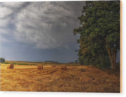 Storm Clouds Over Harvested Field In Poland Wood Print
