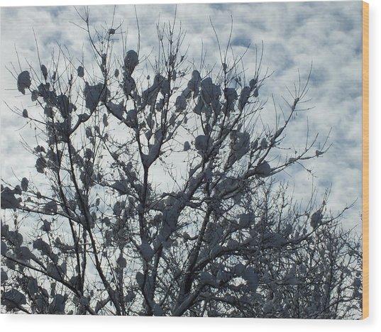 Storm Ends 1 Wood Print by Gene Cyr