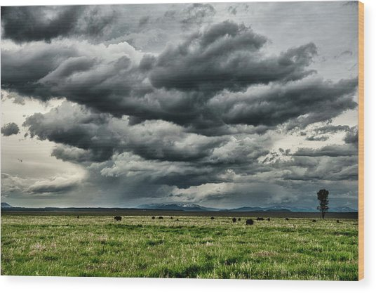 Storm Over Jackson Hole Valley Wood Print by Jeff R Clow