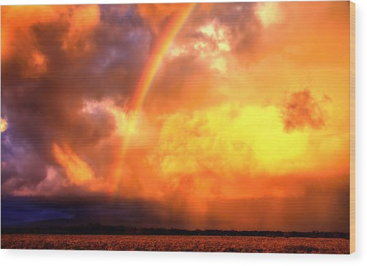 Storm Over The Flinders Ranges Wood Print